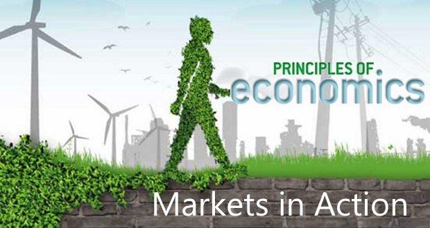 Trắc nghiệm về các hoạt động trên thị trường